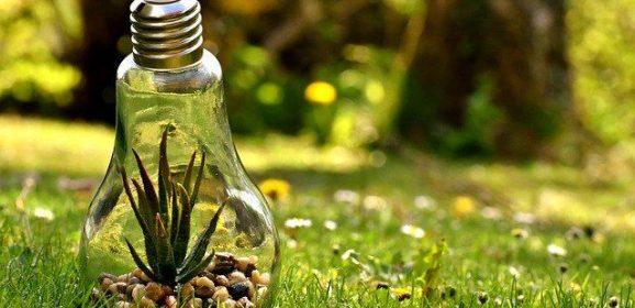 Oszczędzanie energii w firmie. Korzyści dla wszystkich